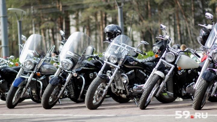 «Макака» и еще 100 байков. В Перми откроется музей ретро-мотоциклов
