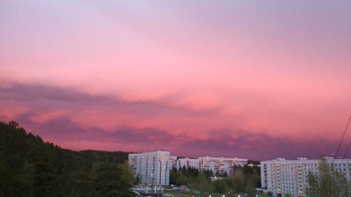Малиновый закат восхитил новосибирцев