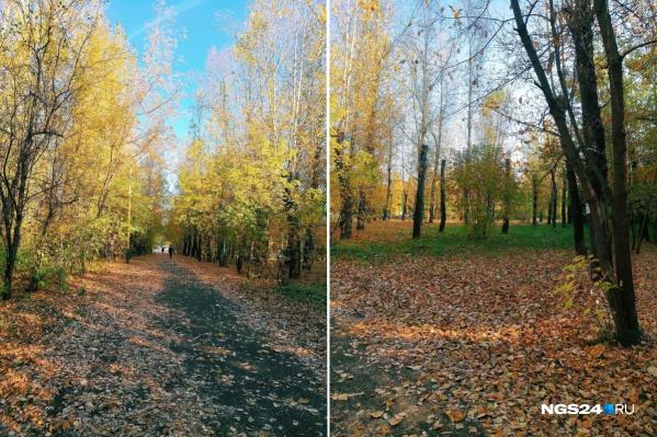 Осень в парке «Троя»
