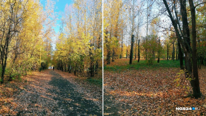 В Красноярске выдался удивительно теплый понедельник. Каким его увидели красноярцы?