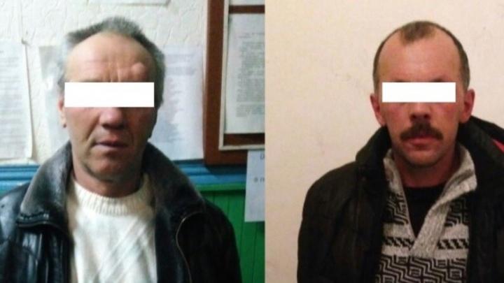 На Урале осудили мужчин, чьи собаки загрызли насмерть 7-летнюю девочку