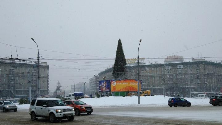 Фото: на площади Калинина поставили огромную ёлку