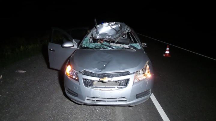 На трассе Екатеринбург — Каменск-Уральский Chevrolet столкнулся с лосем: погибла пассажирка