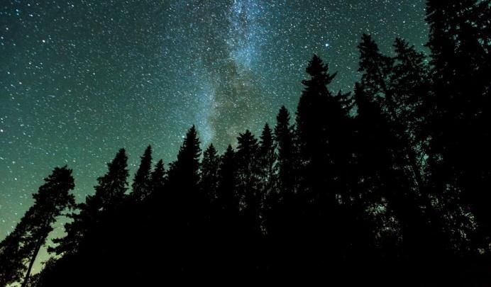 Посмотрите на небо: приметы на сочельник расскажут, каким будет год