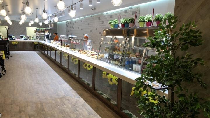Пообедать за 119 рублей: на площади Калинина открылась новая столовая сети «Подсолнухи»