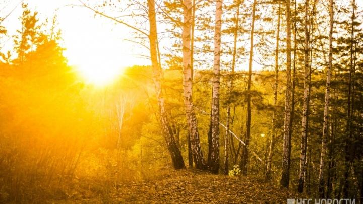 Омские синоптики спрогнозировали похолодание после тёплых выходных