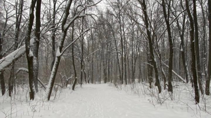Из парка 60-летия Советской власти выгнали казаков