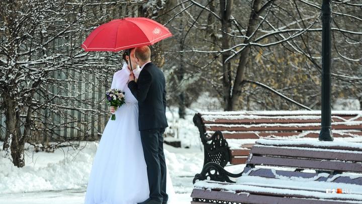 Екатеринбургские женихи и невесты проигнорировали «красивую дату» 19.02.2019