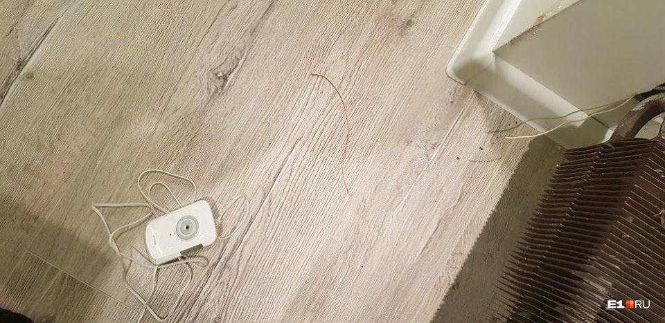 Скрытое камера на женском туалете #12