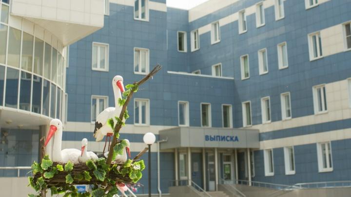 Ярославские следователи выяснят, почему в областном перинатальном центре умерли малыши