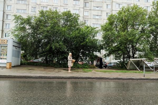 Людям приходится стоять под дождем, пока павильон мирно нежится в кустах