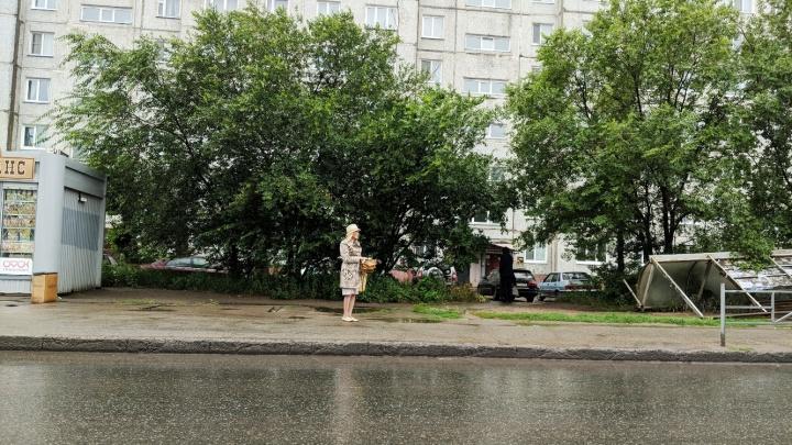 Рухнувшая на проспекте Королёва остановка уже неделю лежит в кустах