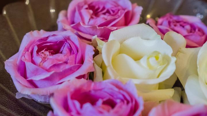 Ученые против мифов: марганцовка, сахар или аспирин — что же добавлять в воду для цветов?