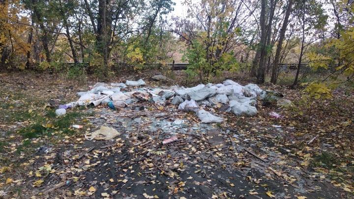 «Солдатская каска на горе отходов»: в Волгограде захоронения защитников Сталинграда завалили мусором