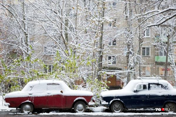 Синоптики говорят, что оттепель в Ярославль пришла на несколько дней