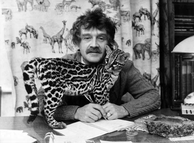 Крупные кошки всегда были любимицами Ростислава Шило