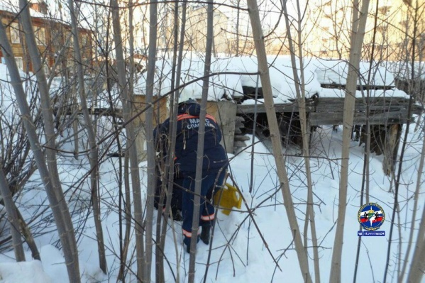 Мальчика вытащили спасатели МАСС