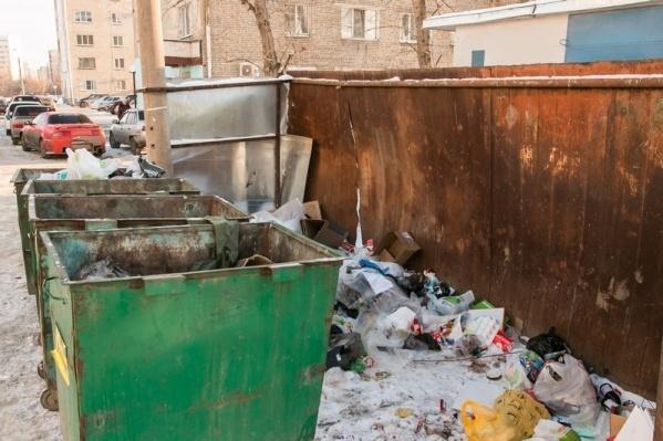 Руководство Зауралья рассказало о том, какие обращения касательно мусора чаще всего поступают от жителей