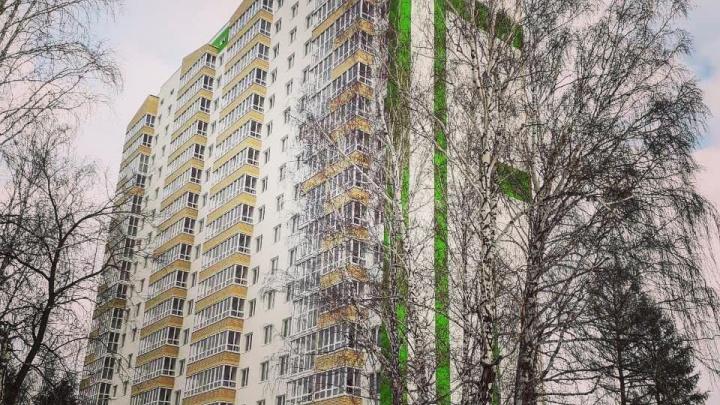 В ЖК «Зеленый Мыс» сдался первый дом: новоселы начинают новую жизнь, а застройщик строит новые планы