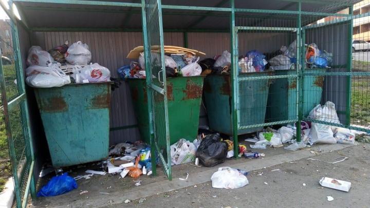 Мусорный беспредел: жители Верхнетемерницкого жалуются на невыносимые кучи отходов