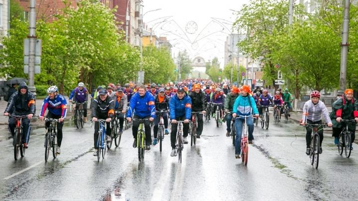 Трассы под Красноярском полностью перекрывают ради велопарада