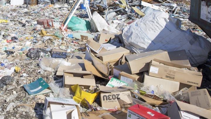 «По документам земля, а по факту — мусор»: в Ярославле под окнами жилых домов устроили свалку
