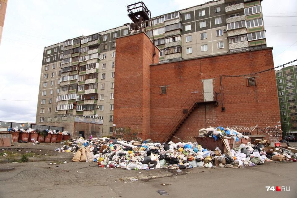 Эта мусорка на Островского, 66 самая большая из всех, что мы видели за эти две адовые недели