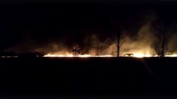 «Огонь приближается к жилым домам»: возле Палкино вдоль дороги вспыхнул крупный пожар
