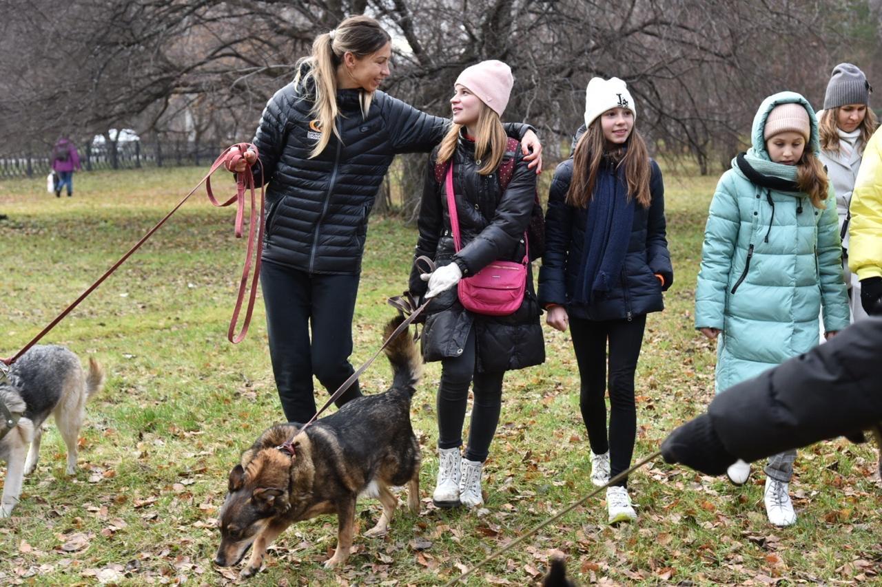 Вместе с баскетболистками тепло собакам дарили их болельщицы