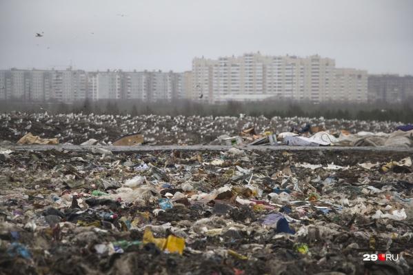 Специалисты подсчитают, сколько мусора находится на свалке и какой ущерб он наносит окружающей среде