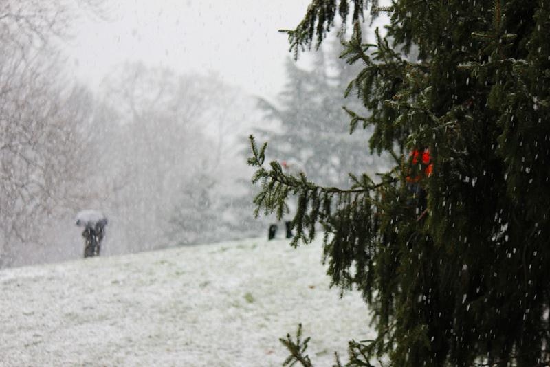 Снегопад может начаться в регионе уже сегодня ночью