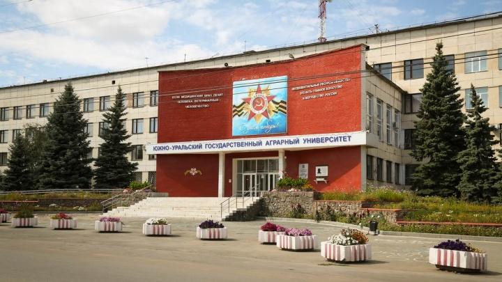Заместителя директора института южноуральского вуза задержали за взятку