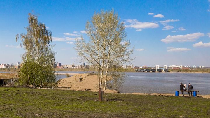 Власти решили восстановить популярный пляж на левом берегу Оби