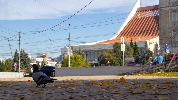 Выходные в Омске будут по-летнему тёплыми