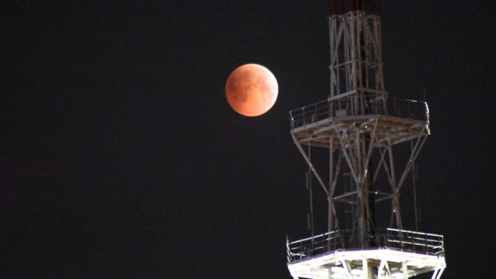 «Кровавая» Луна глазами тюменцев: 10 завораживающих кадров редкого астрономического явления