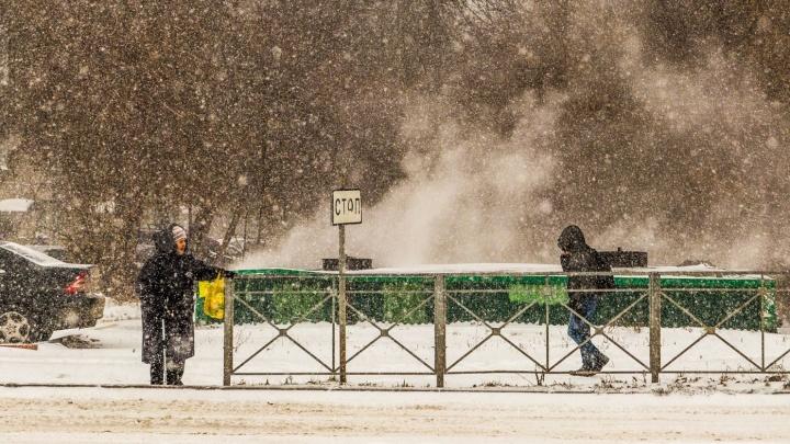 Грянули первые морозы: 9 инструкций, которые спасут вас от погодных аномалий в Новосибирске