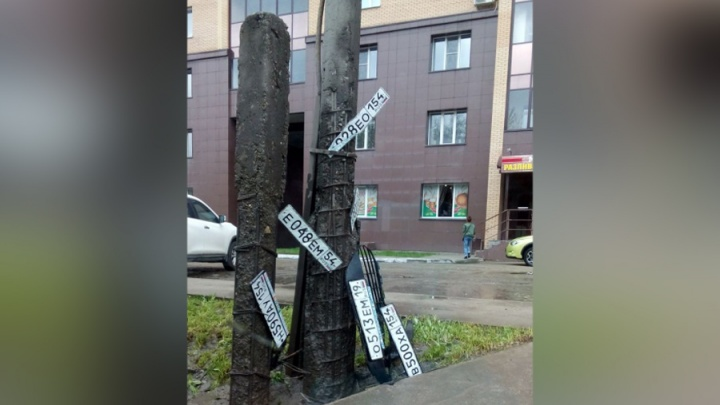 После дождя два столба в Академгородке украсили потерянными автономерами