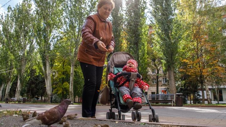Город в золоте: смотрим самые теплые фотографии осеннего Волгограда