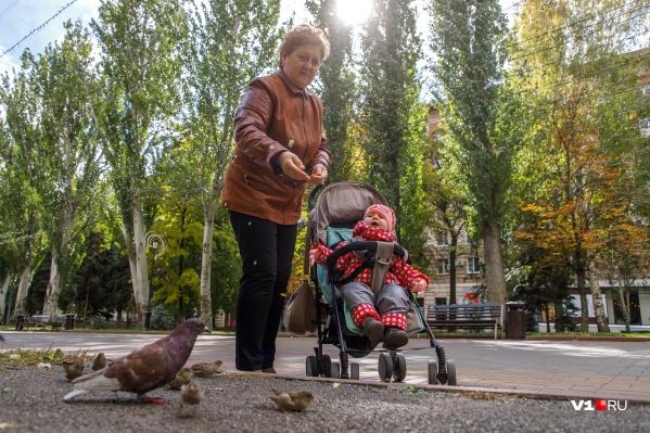 Как Волгоград встречает бабье лето?
