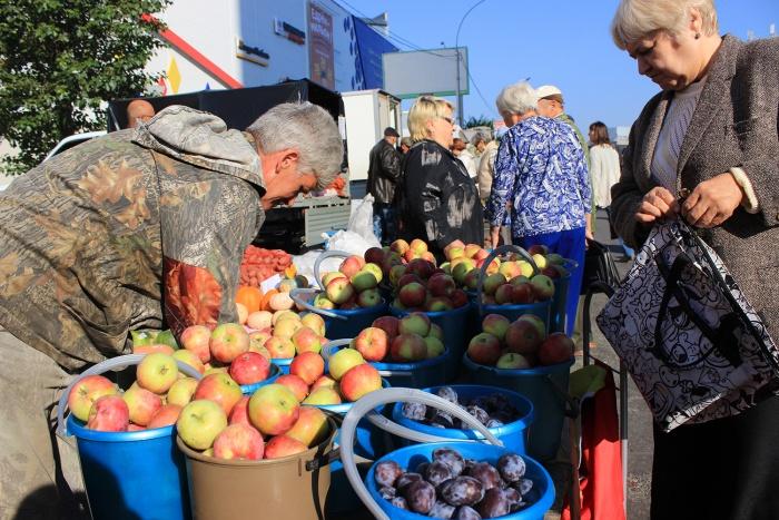 Ярмарка на улице Сибиряков-Гвардейцев пройдёт второй раз за эту осень