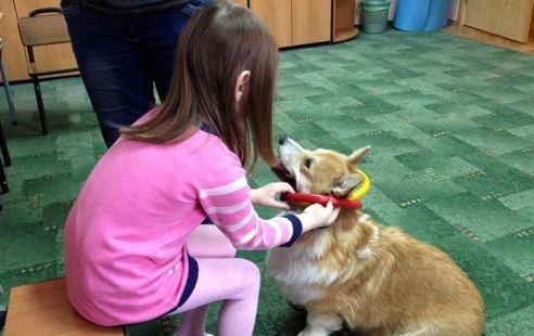 В Красноярске собаки учат детей ходить и общаться с людьми