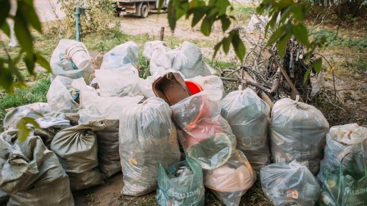 Генеральная уборка: в субботу волонтеры очистят Архангельск от мусора