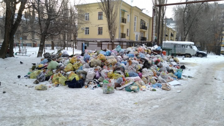 «Мы их в глаза не видели»: Волгоград продолжает тонуть в горах новогоднего мусора