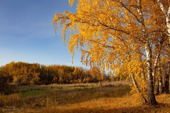 Эх, подольше бы продержалась золотая осень без дождей и снега!