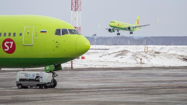 В столицу и на море: в Толмачёво рассказали, куда новосибирцы летают чаще всего