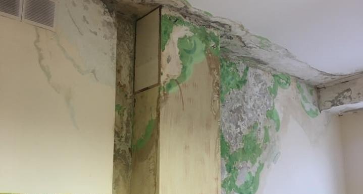 """""""Ужасные условия"""": детей в садике на Готвальда перевели в группу с протекающей крышей и зеленью на стенах"""