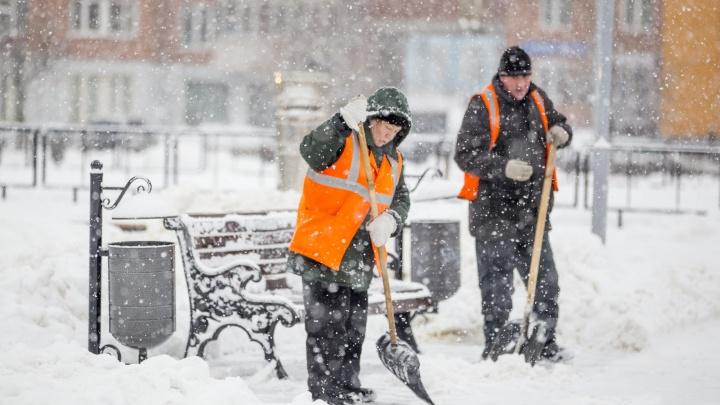 Вторая снежная волна: Ярославскую область накроет мощная метель