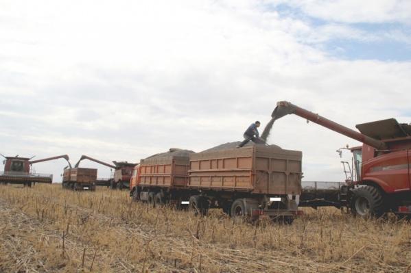 Предложение делает процесс коммуникации более удобный как в офисе, так на фермерском производстве