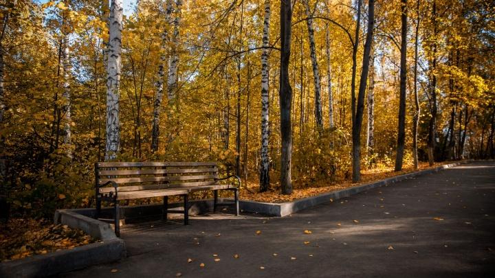 К Новосибирску крадётся астрономическая осень