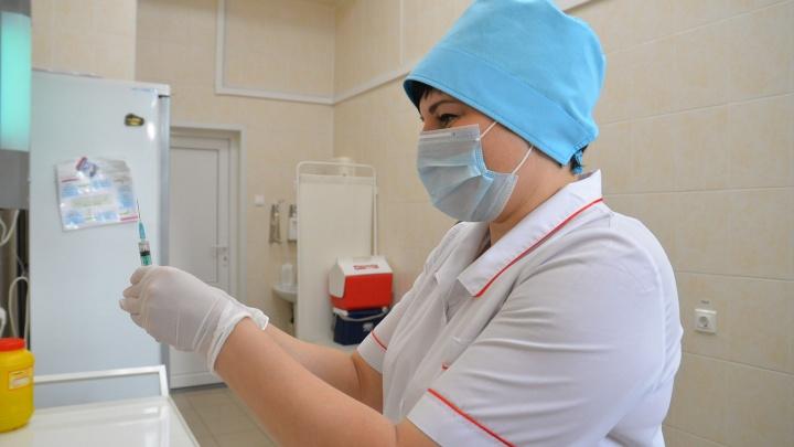 Екатеринбуржцев начали прививать от энцефалита, но вакцины пока есть не везде